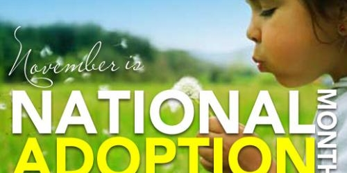 November is National Adoption Awareness Month Banner Photo